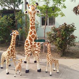 Giraffes Toys For Children Australia - Dorimytrader Pop 145cm Giant Giraffe Plush Toys Soft Stuffed Emulational Animals Giraffes Doll Decoration Gifts for Children
