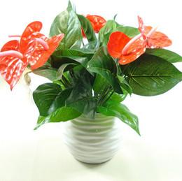 Discount balcony desktop - Anthurium, Green Potted Anthurium Flowers Indoor Green Plants Balcony Office Desktop Artificial Flowers Bonsai