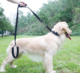 China Reflective Dog Leash Anti Pull Training Dog Leash No Pull Traffic Stop Shock Absorbing Bungge Pet Leash with 2 Control Handles cheap dog leash pull suppliers