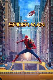 $enCountryForm.capitalKeyWord Australia - SPIDER-MAN HOMECOMING MOVIE wall decor Art Silk Print Poster 6868