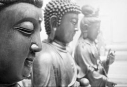 buddhism posters NZ - Black & White Row of Buddha (Buddhist Buddhism) Art Silk Print Poster 24x36inch(60x90cm) 016