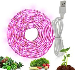grow light strips UK - Led Grow Light Full Spectrum Plant Grow Strip Light Usb 5v 2835 Smd Flexible Lamp For Indoor Plant Flower Seedling