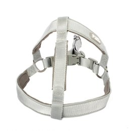 $enCountryForm.capitalKeyWord Australia - Pet dog toy leash is suitable for medium and large dog chest strap collar