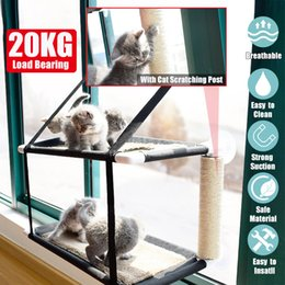 large cat hammock NZ - 20KG Load Cat Window Perch Pet Cat Hammock Bed Window Mounted Seat Home Suction Cup Hanging Bed Mat Cat Accessories T200618