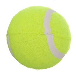 Automatic Dog Feeder Entertainment Training Toys Interactive Tennis Ball Launcher Throwing Ball Machine Pet Food Emission Device