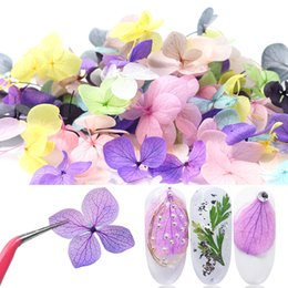 dried flowers for nails UK - eauty & Health 100pcs Lot 3D Dried Flowers Nail Decorations Real Floral Design Charms Jewelry For Manicure Stickers Nail Art Accessories ...