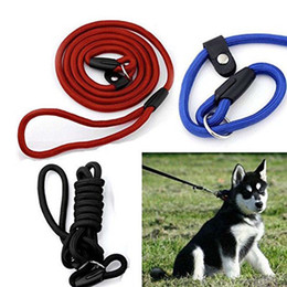 train dog leash Australia - New Pet Dog Nylon Rope Training Leash Slip Lead Strap Adjustable Traction Collar Pet Animals Rope Supplies Accessories