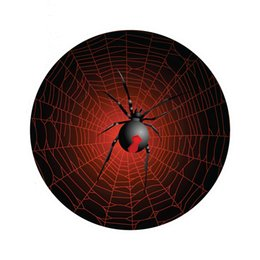 $enCountryForm.capitalKeyWord Australia - Red Back Spider And Web Sticker Vinyl Car Proud And Interesting Personality Car Accessories Decal Decor