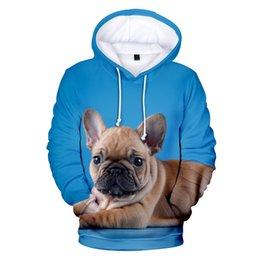 Men's Clothing New Fashion Cute French Bulldog Print 3d Hoodies Pullover Men Women Capless Sweatshirt Casual Long Sleeve 3d Hoodie Clothes Tops