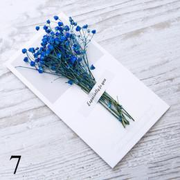 $enCountryForm.capitalKeyWord Australia - Gypsophila dried flowers handwritten blessing greeting card birthday gift card wedding invitations