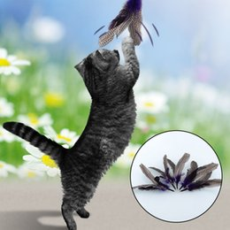 Wand Attachments Australia - 2019 New Style Da Bird Feather Wand For Cats Toy & 2 Attachment Refills Go Cat Interactivepet toys dogs Cat accessoires