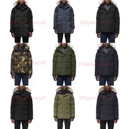 $enCountryForm.capitalKeyWord Australia - 2019 Raccoon Fur Men Winter Jacket Puffer Jackets Men's Goose Down Jacket Parka Mens Coat Windbreaker Outdoor Warm Doudoune Homme E45-47