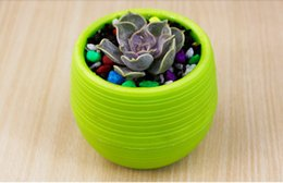 $enCountryForm.capitalKeyWord Australia - Mini color round plastic stone pill netted grass pot succulent flower pot garden home office decoration