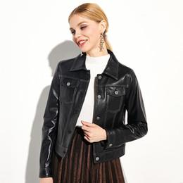 Korean Motorcycle Jacket Australia - Lapel leather motorcycle leather jacket female 2018 tide new short Korean fashion sheep jacket spring and autumn