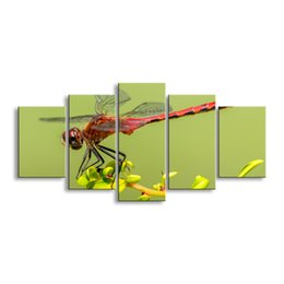 Art Canvas Prints Australia - 5 pieces high-definition print dragonfly canvas painting poster and wall art living room picture QIT5-005