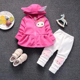 Cartoon Rabbit Hoodies Australia - good qulaity baby girl clothes sets spring autumn cartoon rabbit hoodies + pants christmas outfit kids bebes suits tracksuits