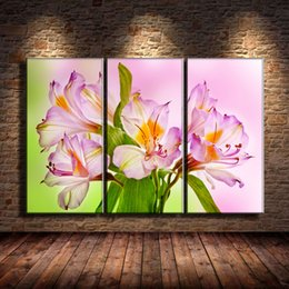 oil painting art wall decor Australia - Pink Lilies,3 Pieces Canvas Prints Wall Art Oil Painting Home Decor (Unframed Framed) .
