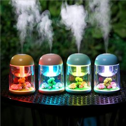 Wholesale LED Micro Landscape Humidifier Mini Air Humidifier USB Ultrasonic Diffuser Mist Maker Colorful Changing LED Night Light LJJK1519