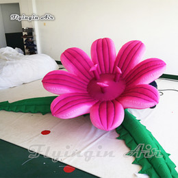 blooms flowers UK - Exotic Lighting Inflatable Blooming Flower 1.8m Diameter Pink Cannibal Flower With Led Light For Stage And Party Decoration