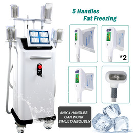 Cryolipolysis Therapy Machine à froid lipolyse Lipofreeze Cryo Fat Gel Liposuccion perte de poids minceur Machine