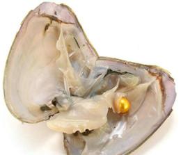 $enCountryForm.capitalKeyWord Australia - LEMON Fancy Gift Akoya High quality cheap love freshwater shell pearl oyster 5-7mm pearl oyster with vacuum packaging