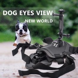 $enCountryForm.capitalKeyWord Australia - Pets Dog Harness Mount Chest Strap Shoulder Belt With Camera Holder for Insta360 ONE X EVO Action Camera Dog Harness Mount