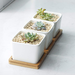 "China Pack of 3 Succulent Planters Planter Pots 2.2"" White Ceramic Square Planters Green Plant Pots Cactus Planters with Bamboo Tray Vases suppliers"