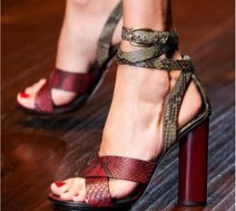 $enCountryForm.capitalKeyWord Australia - Hot Sale-New 2017 Summer Ladies Sandals T Show Pumps Snake Leather Strap Criss Cross Chunky heels Open toe Ladies Gladiators Women Shoes