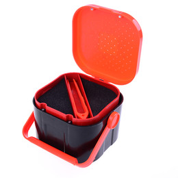 bait boxes wholesale Australia - Fishing Tackle Box 2 Compartments Fishing Box Multifunctional Plastic Earthworm Worm Bait Lure Fly Carp Accessories 3 Sizes