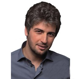 Black Wigs Highlights Australia - men's hair wigs synthetic Middle-aged and old people short curly hair black gray mixed color highlights short hair fluffy short hairpiece