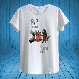 T shirTs fiTTed for online shopping - Some Friends Are Secret Haters Fun T Shirt Design Unisex Man Women Fitted For Youth Middle Age Old Age Tee Shirt