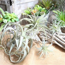 $enCountryForm.capitalKeyWord Australia - rtificial Plants YO CHO 1PC Green Air Pineapple Grass Artificial Succulet Plants Vine Hanging Leaves Rattan Fake Flower Home Garland Deco...