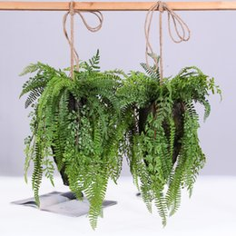 $enCountryForm.capitalKeyWord Australia - Artificial Plants Plastic Fern Green Leaf Hanging Ball Fern Bonsai Flowers Home Shop Garden Wedding Hanging Decoration