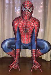 $enCountryForm.capitalKeyWord Australia - ovie & TV costumes Raimi Spiderman Costume 3D Original Movie 2017 Halloween Cosplay Spiderman Suit Including glasses For Adult Kids C...