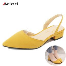 f39111e909b 2019 Dress Ariari 2018 Spring Women Low Heel Flock Sandals Korean Style  Summer Slingbacks Shoes for Women Sweet Dress Shoes Lady Pumps