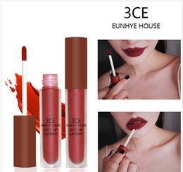 3ce cosmetics Canada - Tamax MP004 10 Colors Lip Gloss Matte Lips Red Lipgloss Waterproof Cosmetics Lip Tint Batom Brown Velvet Liquid Lipstick 3CE Eunhye House