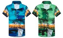 Ingrosso Uomini Genere e Adulti Fascia d'età Hawaiian Beach Uomo Hawaii Abbigliamento casual Camicie casual da uomo