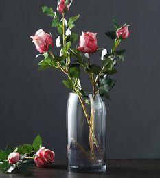 $enCountryForm.capitalKeyWord Australia - Nordic creative light luxury glass vase hydroponic flowers gradient craft vase living room table flower arrangement decorative ornaments