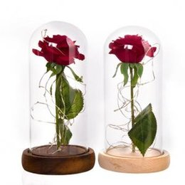 Novelty Plastic Glasses Wholesale Australia - LED Rose Flowers Glass Cover 2 Colors Eternal Love Preserved Natural Gifts Novelty Items Xmas Decor OOA6124