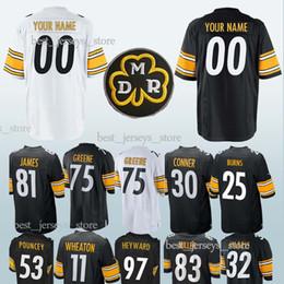 25911aec8 Pittsburgh jerseys Steeler 21 Joe Haden 17 Eli Rogers 31 Mike Hilton 25  Artie Burns 75 Joe Greene 81 Jesse James customized Jersey