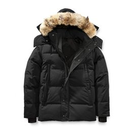 Winter Fourrure Down Parka Homme Jassen Chaquetas Outerwear Wolf Fur Hooded Fourrure Manteau Wyndham Canada Down Jacket Coat Hiver Doudoune on Sale