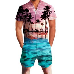 cedac4ce735 2019 Hawaiian Sea Flamingo Print 3D Rompers Men Jumpsuit Playsuit Harem  Cargo Overalls Summer Casual Zipper Beach Men s Sets