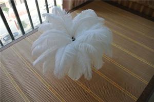 50 pz bianco piuma di struzzo plume per centrotavola di nozze di natale piuma decor wedding home decorazione della tavola del partito