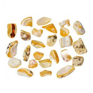 Dorabeads 쉘 스페이서 마카 담 비즈 불규칙한 오렌지 약 22mm x 10mm-11mm x 10mm, 구멍 : 약 1.1mm-1.4mm, 100g