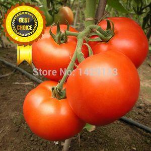 Livraison gratuite 400 pcs Rouge poire tomates graines de légumes pour le bricolage maison jardin légumes Beefsteak graines de tomates Semillas de Tomate