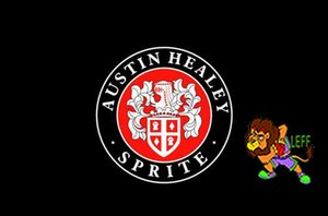 Austin Healey Bandiera, 90 * 150cm, 100% poliestere, banner, stampa digitale