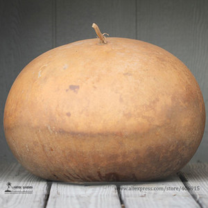 Giant African Bushel Basket Gourd Lagenaria Siceraria Seeds, Professional Pack, 10 Seeds   Pack E3333