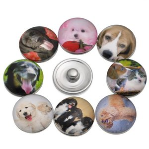 Wholesale-wholesale 60pcs lot 19 styles colors interchangeable ginger snap button charm 18mm button snap jewelry free ePacket