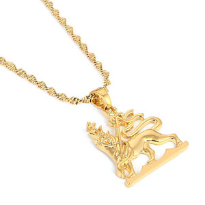 Золотой Цвет Кулон Африка Эфиопия Карта Лев Король Золотые Украшения для Женщин Мужчин Подарок Свадебные Украшения Партии