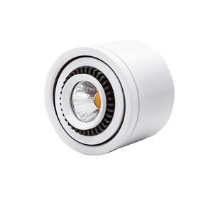 Yüzey LED COB Aşağı ışık 3W / 7W / 10W / 18W LED Lamba AC85V-265V Tavan Spot Işık ile LED Sürücü Beyaz / Warm Beyaz Atlı